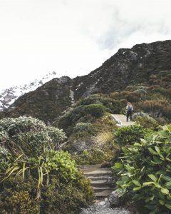 Einige der vielen Stufen des Sealy Tarns Tracks