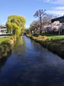 Der Avon River