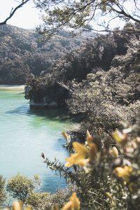 Abel Tasman National Park newzealand