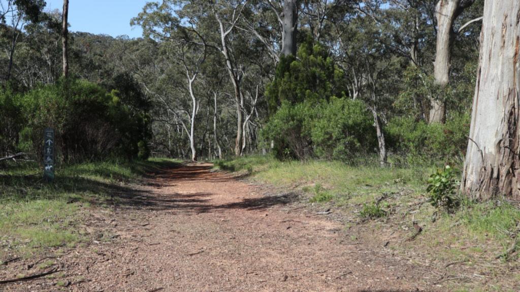 Belair Nationalpark