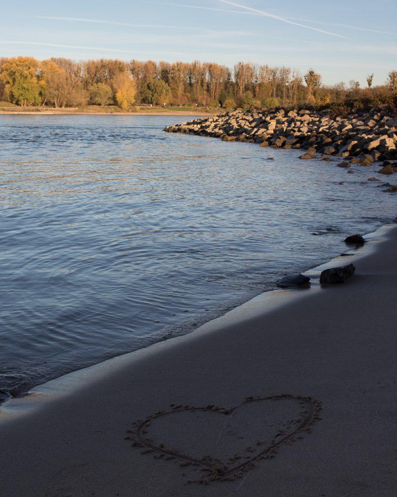 Der Rhein in Dormagen