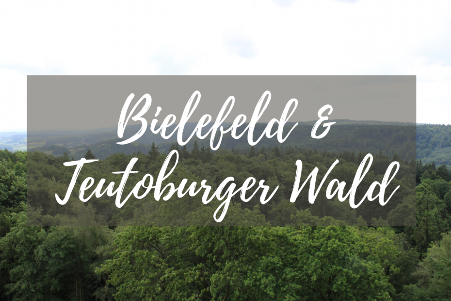 Bielefeld & Teutoburger Wald